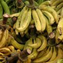 Recettes de cuisine - Banane plantain